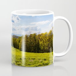 A View of the Blue Ridge Mountains from Shenandoah National Park Coffee Mug