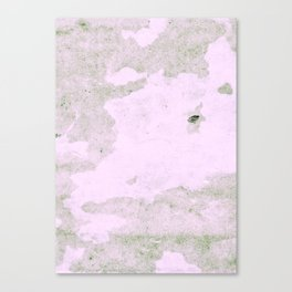 pink and grey texture Canvas Print
