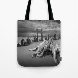 Tree Stump and Pilings on the Beach in Black and White at Kirk Park by Grand Haven Michigan Tote Bag