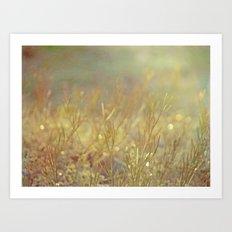 Meadow Awakening - Morning Landscape Art Print