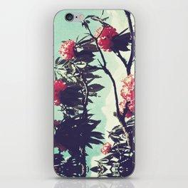 Turquoise Jewels iPhone Skin