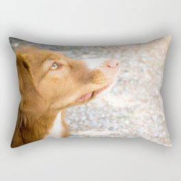 Duck-Tolling Retriever Rectangular Pillow
