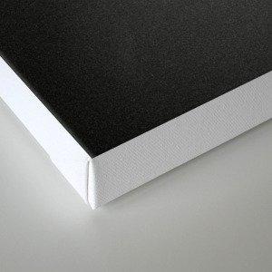 Érode Canvas Print