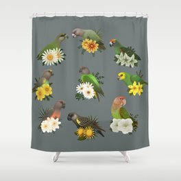 Poicephalus Parrots Shower Curtain