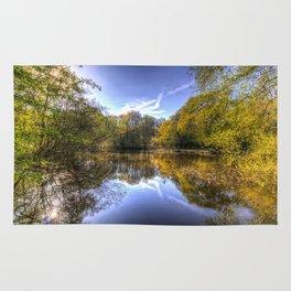 The Silent Pond Rug
