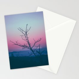 Winter's Branches Stationery Cards