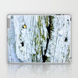 Weathered Barn Wall Wood Texture Laptop & iPad Skin