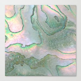 Shell Texture Canvas Print