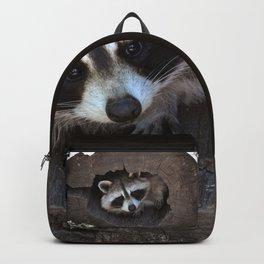 Hiding baby raccoon Backpack