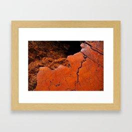 Ancient Log Framed Art Print