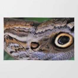 Giant Owl Butterfly Wing Rug