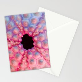 Pastel Urchin Stationery Cards