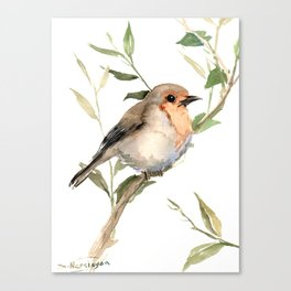 Watercolor Robin Canvas Print