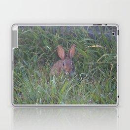 Rabbit in the Grass Laptop & iPad Skin