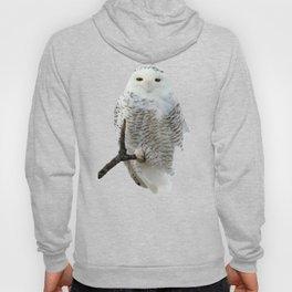 Snowy in the Wind (Snowy Owl) Hoody