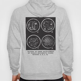 Fission Hoody