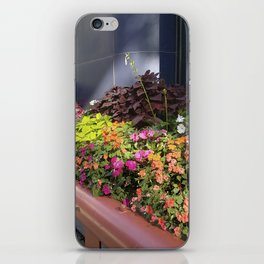 Madison WI Urban Color 1 iPhone Skin