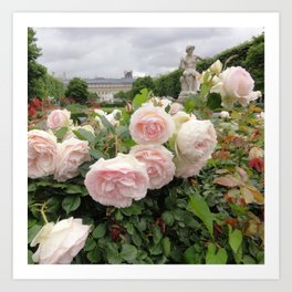 Paris Hidden Garden Roses Art Print