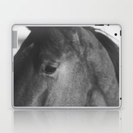Horse Photograph in Black and White Laptop & iPad Skin