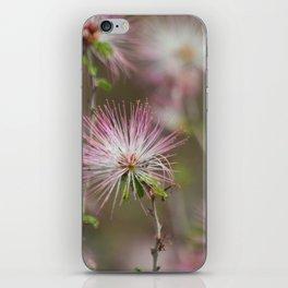 Desert fairy dusters iPhone Skin