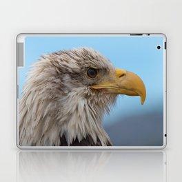 White Headed Eagle Portrait. Laptop & iPad Skin
