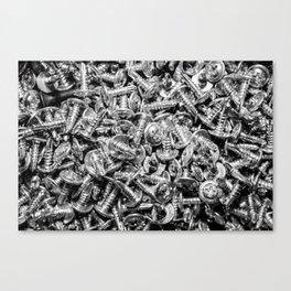 screws Canvas Print