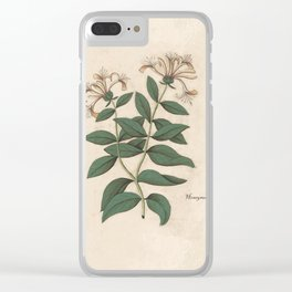 The Fragrant Honeysuckle Clear iPhone Case