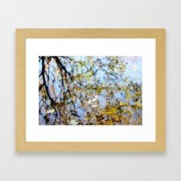 Reflection on Water Framed Art Print