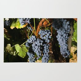 Grapes Vineyard Rug