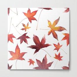 Dead Leaves over White Metal Print
