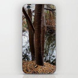 SDRV | Fallen Leaves iPhone Skin
