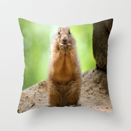 Black Tailed Prairie dog Throw Pillow