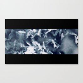 Maple Samaras No.2 Canvas Print