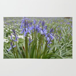 Blue Hyacinth Rug