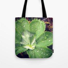 Dew Leaf Iceland Tote Bag