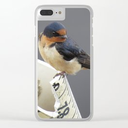 Beautiful Swallow Clear iPhone Case
