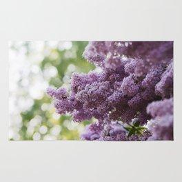Violet Syringa vulgaris lila Rug