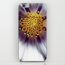 Cosmos bipinnatus blossom and it's reproductive structures are captured in an extreme macro image iPhone Skin