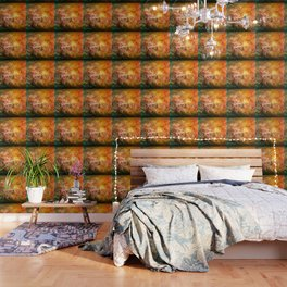 Windblown Cherry Blossom Wallpaper