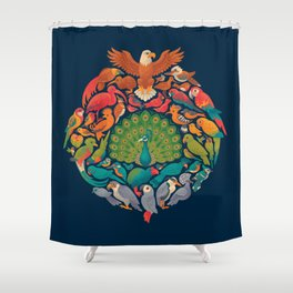 Aerial Rainbow Shower Curtain
