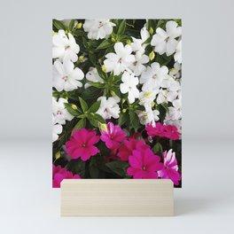 Patient Impatiens - Deep Pink and Sparkling White Mini Art Print