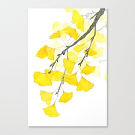 Golden Ginkgo Leaves Canvas Print