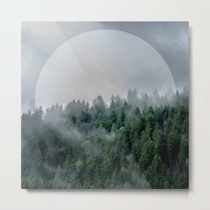 Foggy Woods 3 Metal Print