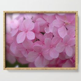 Pink Hydrangea - Flower Photography Serving Tray