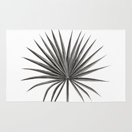 Fan Palm Leaf Rug