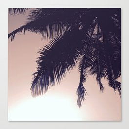 Palm Sunrise Canvas Print