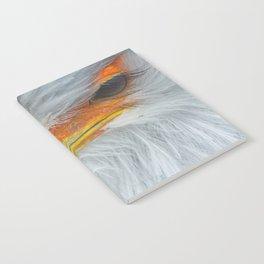 Feathers and eyelashes Notebook
