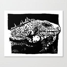 Leguan Canvas Print