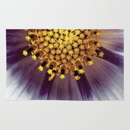 Cosmos bipinnatus blossom and it's reproductive structures are captured in an extreme macro image Rug
