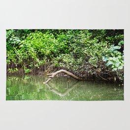 Daintree Rainforest- Reflection Rug